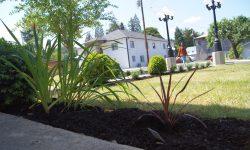 christian boarding school, girls dorm, has new plants