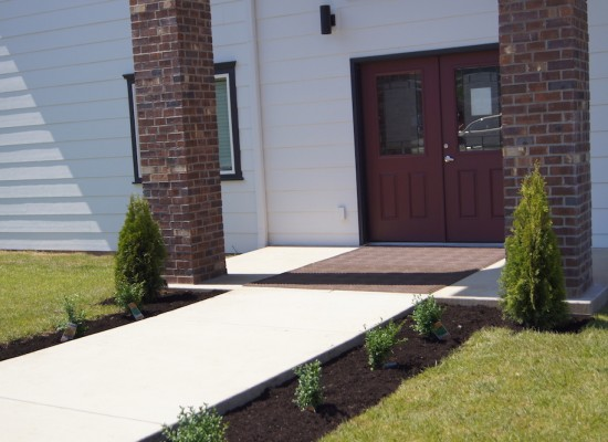 new plants and shrubs planted around new dormitory